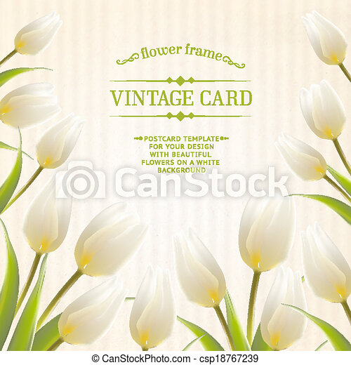 Tulip spring flowers bouquet for your card design vector vectors tulip spring flowers bouquet for your card design csp18767239 mightylinksfo