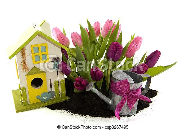 Tulipanes y pajarera - csp3267495