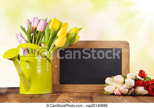 tulipes, bois, coloré - csp25140689