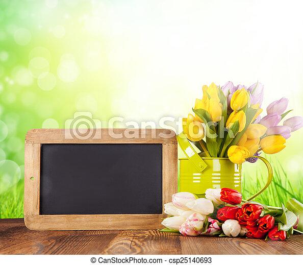 tulipes, bois, coloré - csp25140693