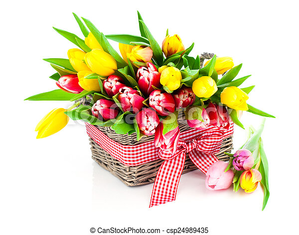 tulips in a basket on a white background - csp24989435