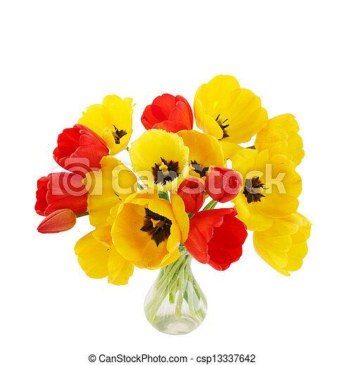 tulips in a vase - csp13337642