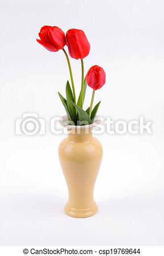 Tulips in a vase - csp19769644
