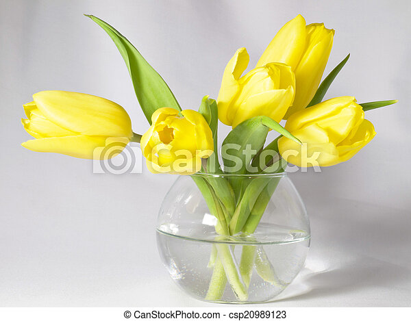 Tulips in a vase - csp20989123