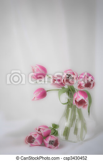 Tulips in a vase - csp3430452