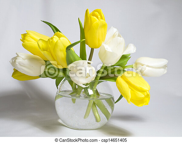 Tulips in a vase - csp14651405