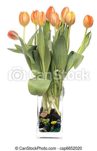 tulips in a vase - csp6652020