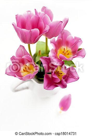 Tulips in a vase - csp18014731