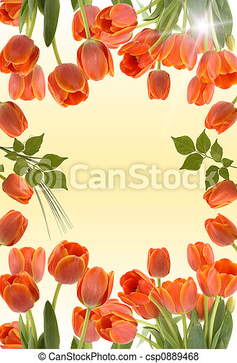 Tulips - csp0889468