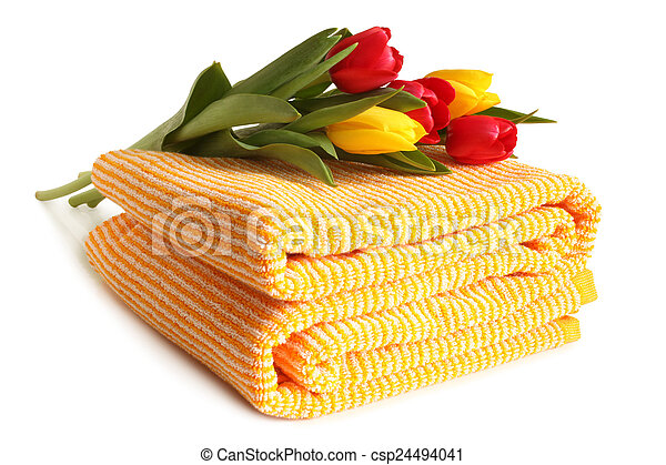 tulips, toalha banho, fresco - csp24494041