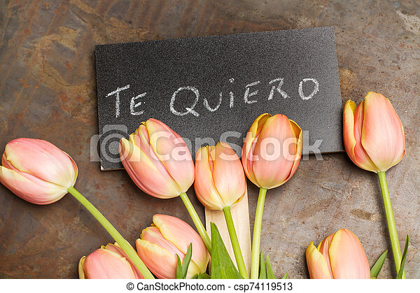 Tulips with a sign with the word love - csp74119513