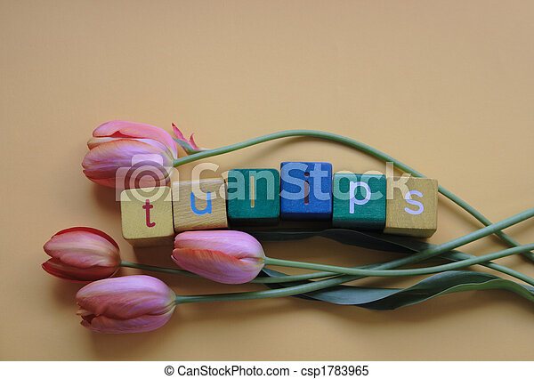 tulips with word - csp1783965