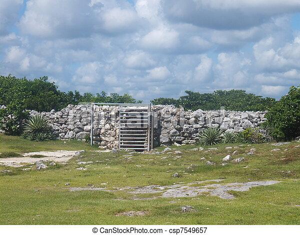 Tulum Mayan Ruins - csp7549657