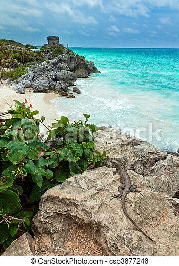 Tulum - Mayan Ruins - csp3877248