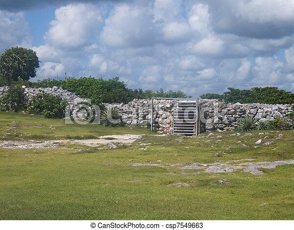 Tulum Mayan Ruins - csp7549663