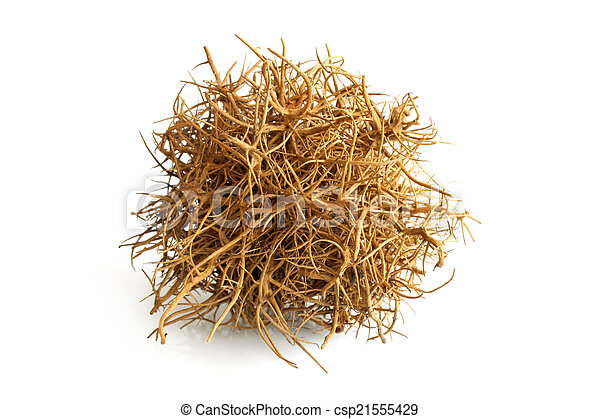 tumbleweed on white background stock photo search pictures and rh canstockphoto com tumbleweed clipart black and white animated tumbleweed clipart