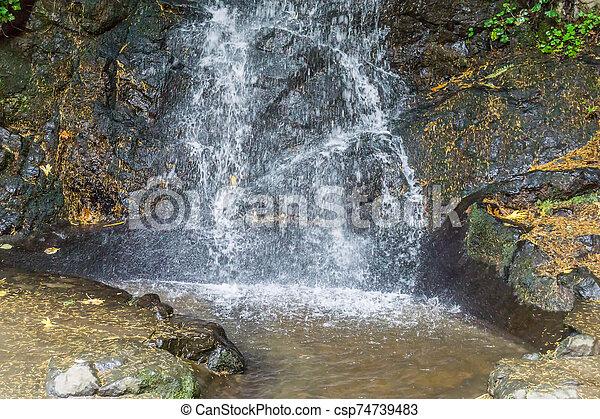 Tumwater Falls Park Misty Waterfall - csp74739483