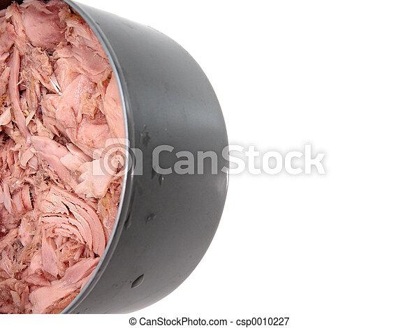 Tuna Can v1 - csp0010227