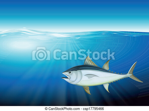 Tuna - csp17795466