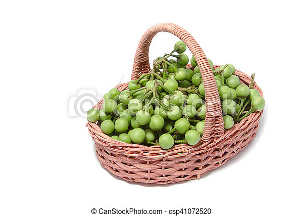 turkey berry in the basket isolated on white background - csp41072520