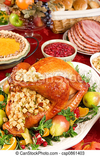 Turkey dinner - csp0861403