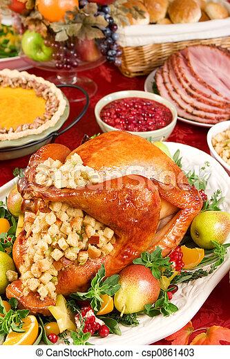 Turkey dinner - csp0861403
