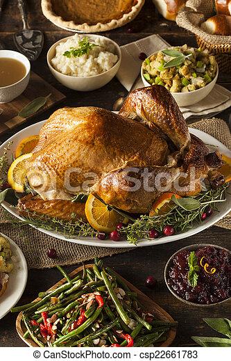 turkije, geheel, dankzegging, zelfgemaakt - csp22661783