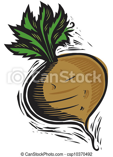 turnip stock illustration search vector clipart drawings and eps rh canstockphoto com enormous turnip clipart turnip clipart images
