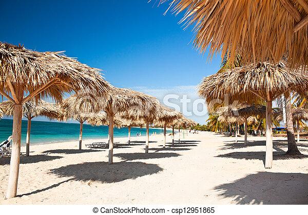 turquesa, caraíbas, cuba, ilha, -, árvores, águas, impressionante, palma, paraisos , praia - csp12951865