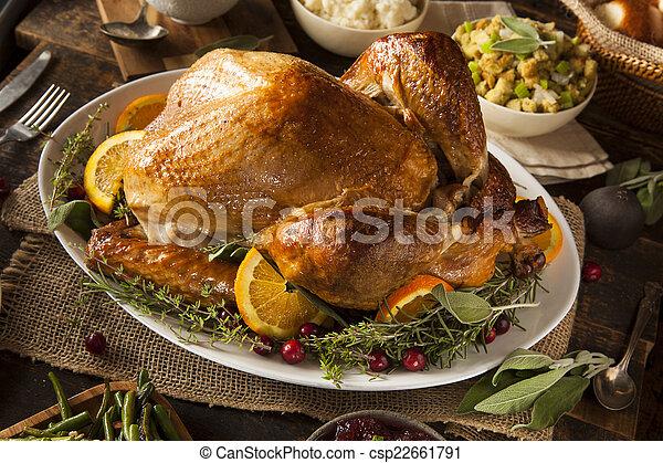 turquie, entier, thanksgiving, fait maison - csp22661791
