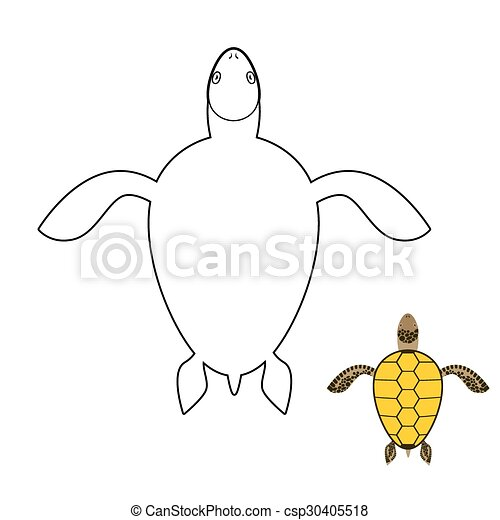 Turtle Coloring Book Marine Reptiles Vector Illustration
