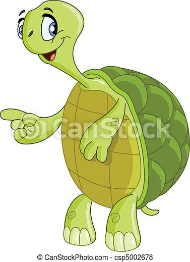 Turtle - csp5002678