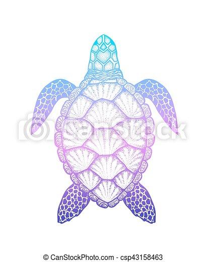 Turtle, färbung, kunst, freigestellt, abbildung, hand,... Clipart ...
