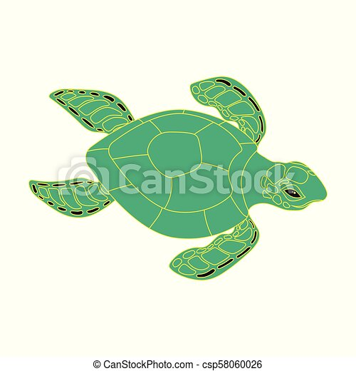 Turtle On A White Background Banner With Colored Turtle On White