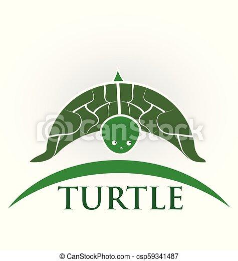 Turtle wildlife, preservation vector - csp59341487