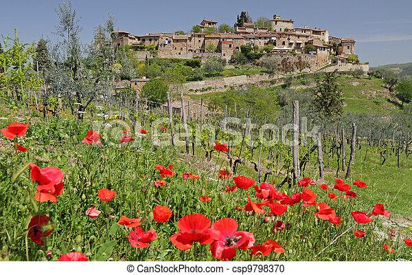 tuscan, 絵のよう, 風景, 村 - csp9798370