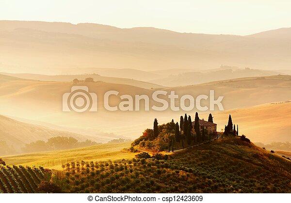 tuscan, panorâmico, típico, paisagem, vista - csp12423609