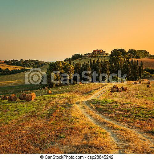 Tuscany, farmland, cypress trees and white road on sunset. Siena, Italy. - csp28845242
