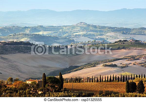 Tuscany landscape at sunrise. Tuscan farm house, vineyard, hills. - csp31325555