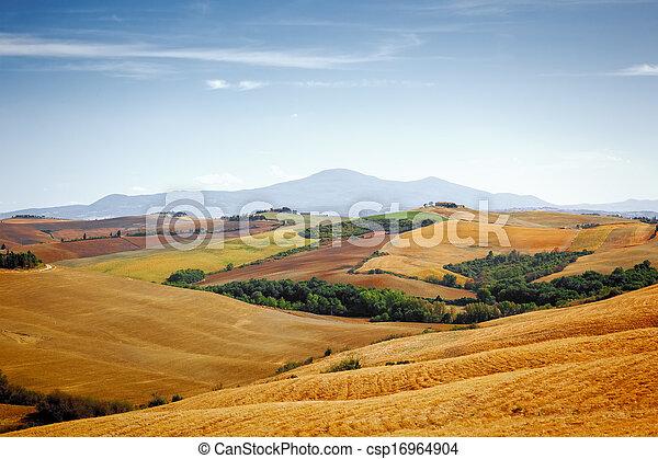 Tuscany Landscape - csp16964904