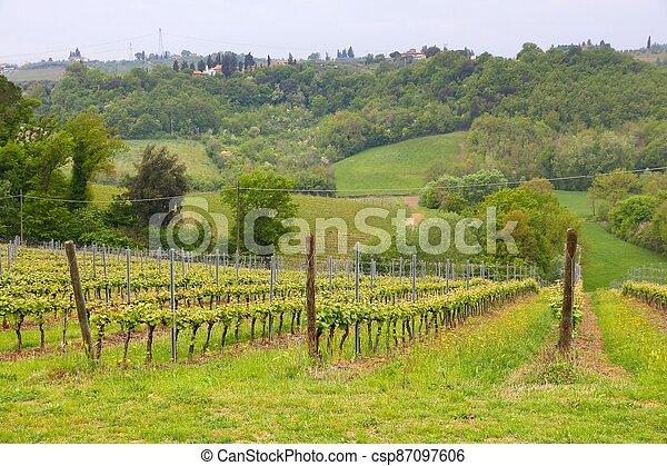 Tuscany landscape - csp87097606