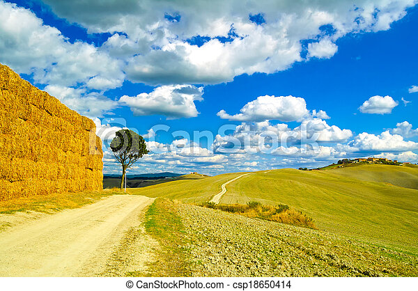 Tuscany, lonely tree, straw bales and white rural road. Siena, Orcia Valley, Italy, Europe. - csp18650414