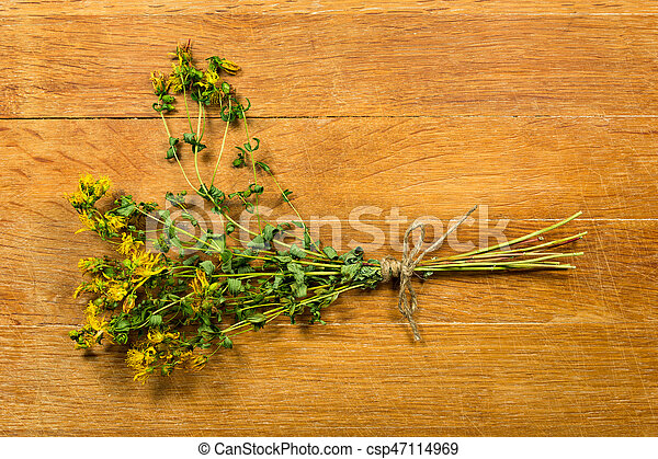 Tutsan. Dried herbs for use in alternative medicine, spa, herbal cosmetics, herbal medicine, preparing infusions, decoctions, tinctures, powders, ointments, butter, tea, bath.
