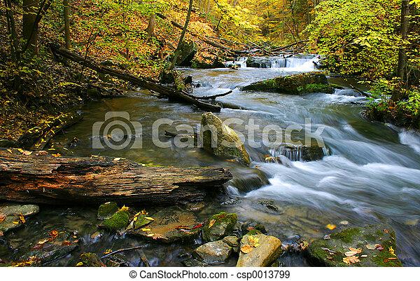 Twelve Mile Creek - csp0013799