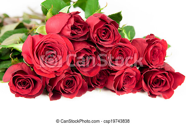 Twelve red roses on a white background. - csp19743838