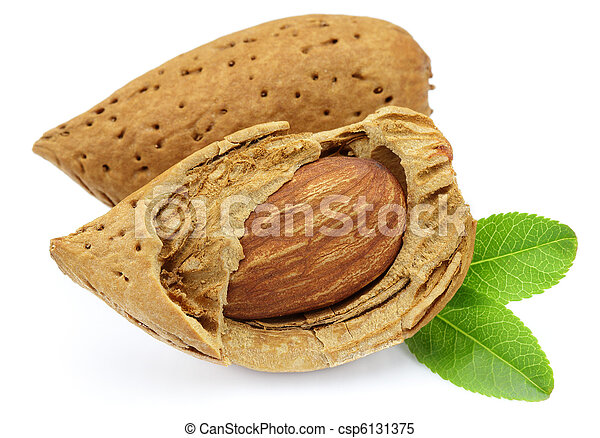 Two almonds with leaves - csp6131375