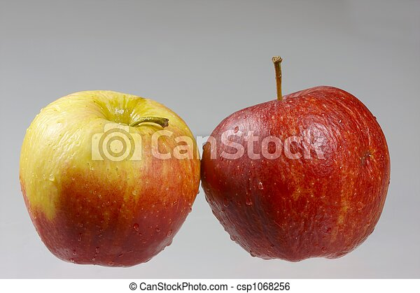 two apples - csp1068256