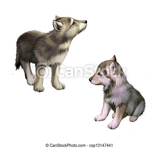 Two Baby Wolfs Puppies Realistic Illustration On White Background