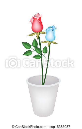 Vector of two beautiful roses in white flower pot a symbol of two beautiful roses in white flower pot csp16383087 ccuart Image collections