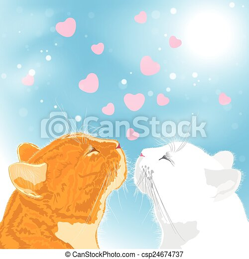 Two beloved cats on sky background. - csp24674737